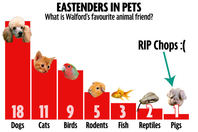 Pets Chart (Feb 2015)