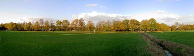 File:Lime Tree Avenue in Ecclesfield Park.jpg