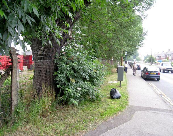 File:2009-06-27 Green Lane(002).jpg