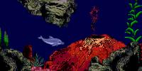 The Volcanos (explorative)