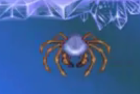 File:Arctic spider.png
