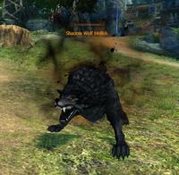 Shadow Wolf Hellisk
