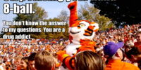Eightball the Tiger