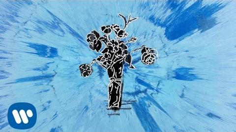 Ed Sheeran - Supermarket Flowers Official Audio