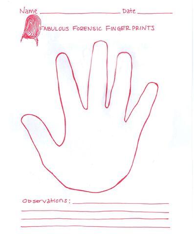 File:Right hand.jpg