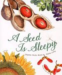 File:A seed is sleepy.jpg