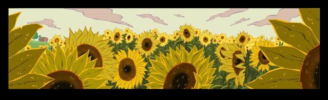 File:Sunflower Field.jpg