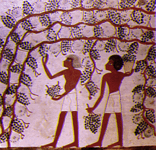File:Egypt farmers.png