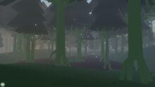 Swamp 6