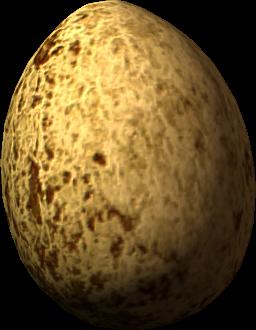 File:Hawk egg.png