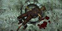 Dead Bandit