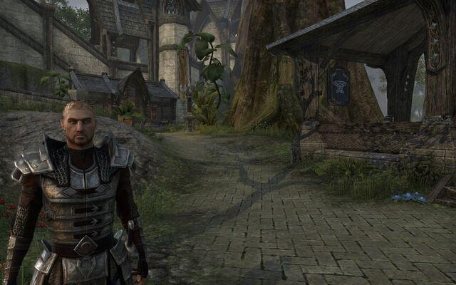 File:Armor (Online).jpg