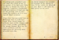 Rogue Necromancer's Journal.png