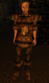 Arkming the Flayer Morrowind.png