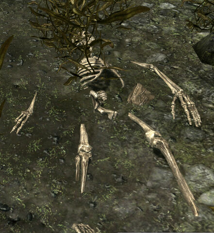 File:Reyda's Remains.jpg