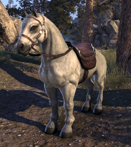 File:Snow (Horse).png