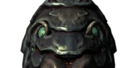 Shellbug Helmet