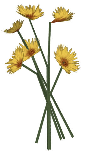 File:BouquetFlowers Ob.png