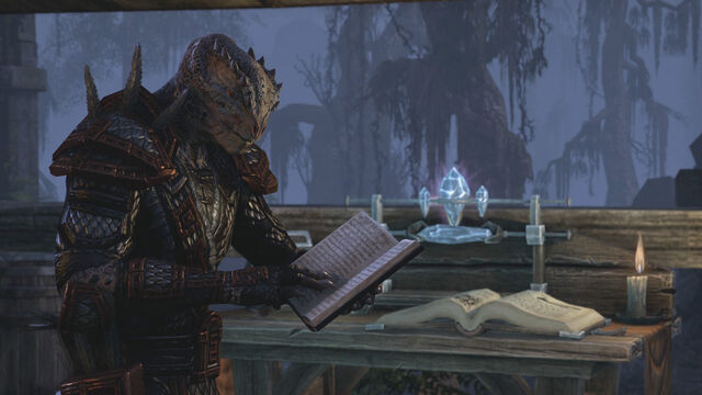 File:Argonian Reading a Book.jpg