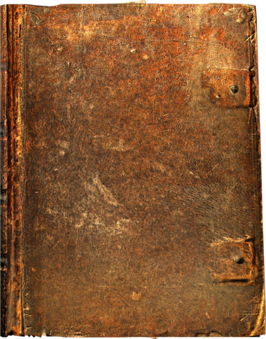 File:BookLarge01.png