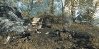 Wood Cutter's Camp: Lake Geir