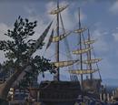 The Tava's Bounty