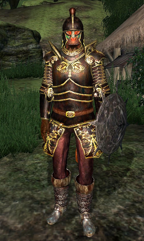 File:Blackwood Company Guard WatersEdge2.png