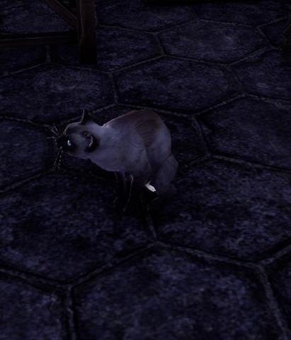 File:Moonstone (Cat).png