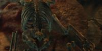 Gratian Caerellius (Dragonborn)