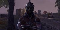 Sentry Thendur