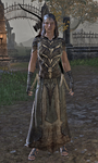 Bloodthorn Disguise Female