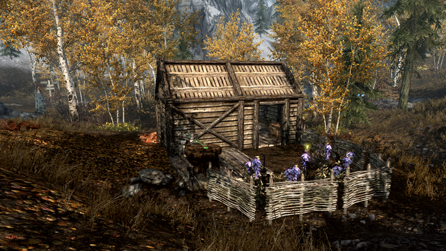 File:TESV Alchemists Shack Rear.png