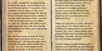 Red Rook's Journal