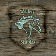TESIV Sign Wildeye Stables