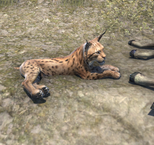File:Lynx (Online).png
