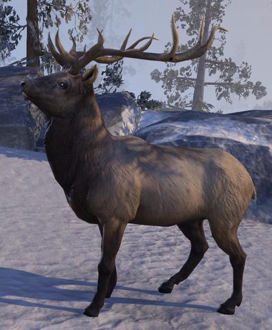 File:Elk (Online).png