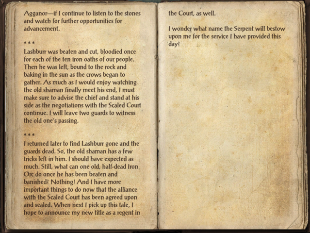 File:Agganor's Journal 2.png