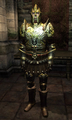 Imperial Dragon Armor Hero.png