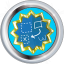 File:Badge-1099-5.png