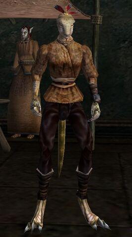 File:TES3 Morrowind - Character - Breech-Star.jpg