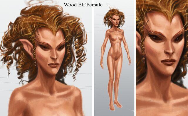 File:Wood Elf Female.jpg
