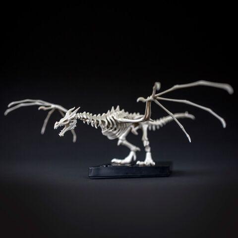File:Skyrim Skeletal Dragon Kit (2).jpg