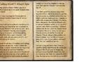 Crafting Motif 7: Khajiit