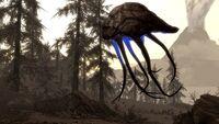 Netch Dragonborn Screen