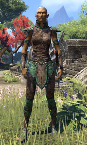 File:Skywatch Warden.png