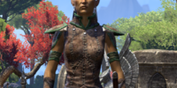 Skywatch Warden
