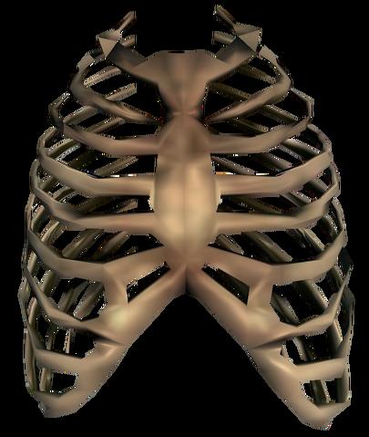 File:Bones Ribcage.png
