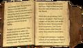 Ildari's Journal, vol. II P1.png