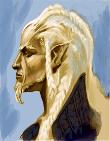 File:High Elf Face.jpg