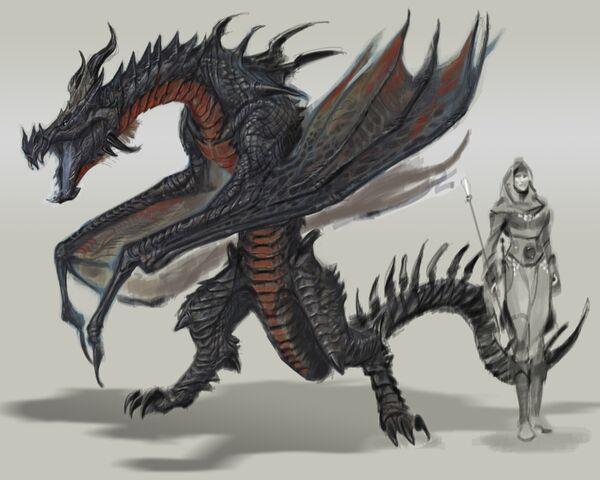 File:TESV Concept Dragon 3.jpg